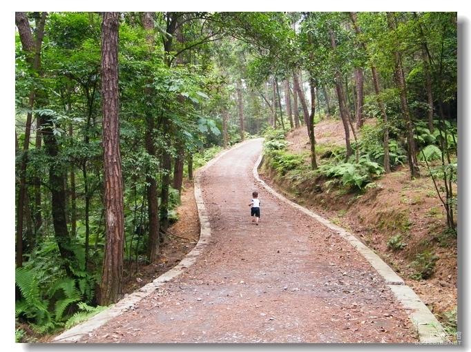 末带儿子自驾 高石梯森林公园